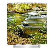 Fall Squared Shower Curtain