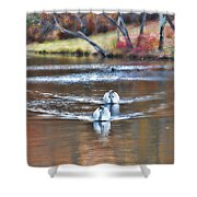 Fall Swans Shower Curtain