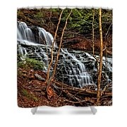 Fall Through The Woods Shower Curtain