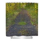 Fall Trail Scene 30  Shower Curtain