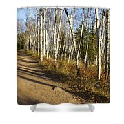 Fall Trail Scene 35 A Shower Curtain