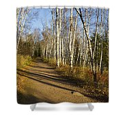 Fall Trail Scene 35 B Shower Curtain