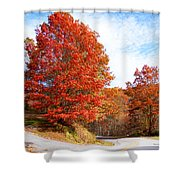Fall Tree By The Road Shower Curtain