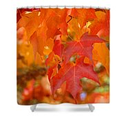 Fall Tree Leaves Art Prints Orange Red Autumn Shower Curtain