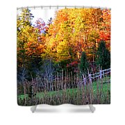Fall Trees And Fence Shower Curtain