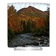 Fall View Shower Curtain