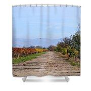 Fall Vineyard Shower Curtain