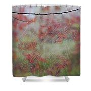 Fall Web Shower Curtain