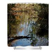 Fallen Beauty Shower Curtain