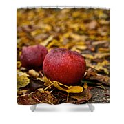 Fallen Fruit Shower Curtain