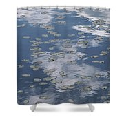 Fallen Leaves And Reflections Of Clouds Shower Curtain