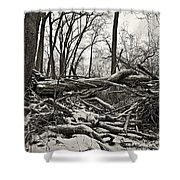 Fallen Soldiers Of The Forest Shower Curtain