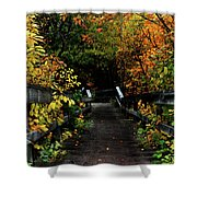 Falling Step Shower Curtain