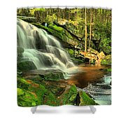 Falling Through The Woods Shower Curtain