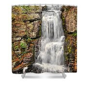 Falls At Bushkill Shower Curtain