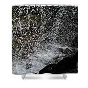 Fall's Backside Shower Curtain