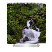 Falls Creek IIi Shower Curtain
