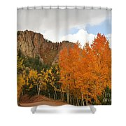 Fall's Glory Shower Curtain