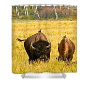 Familial Grazing Shower Curtain