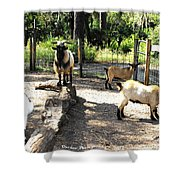 Family At Landscape Creations  Shower Curtain