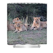 Family Time Shower Curtain