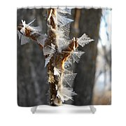 Fancy Fractal Frost Crystals Shower Curtain