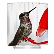 Fancy Friend Shower Curtain
