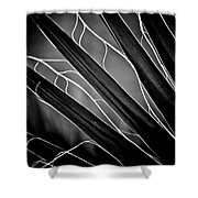 Fanned Leaves Shower Curtain