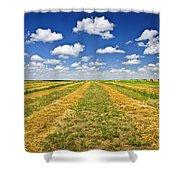 Farm Field At Harvest In Saskatchewan Shower Curtain