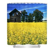 Farm House And Canola Field, Holland Shower Curtain
