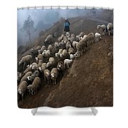 farmers bring their sheep to graze. Republic of Bolivia. Shower Curtain
