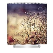 Fascinating Life Of Grass. Painting With Light Shower Curtain