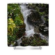 Fast Beauty Shower Curtain