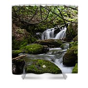 Fast Falling Shower Curtain