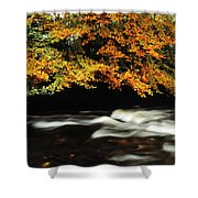 Fast Flowing Water And Fall Colours Shower Curtain