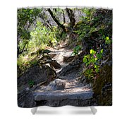 Feather Falls Stairway Shower Curtain