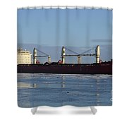 Federal Phine Shower Curtain