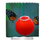 Feeding Butterflies Shower Curtain