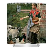 Feeding The Chickens Shower Curtain