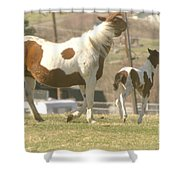 Feeling Frolicsome  Shower Curtain
