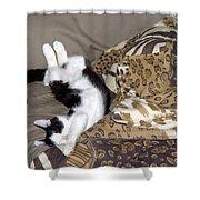 Felis Catus Shower Curtain