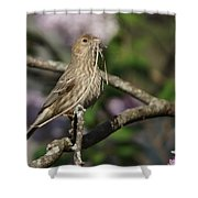 Female Finch Shower Curtain