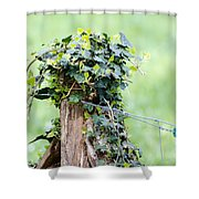 Fence Port Shower Curtain