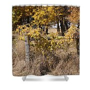 Fence Post Shower Curtain