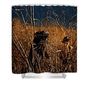 Fencepost And Thistles Shower Curtain