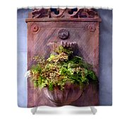 Fern In Antique Wall Planter Shower Curtain