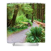 Ferns And Mosses Shower Curtain