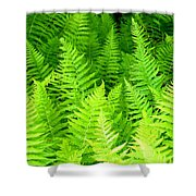 Ferns Galore Filtered Shower Curtain