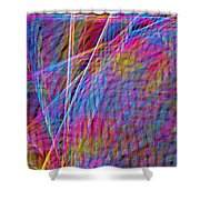 Ferris Tracings 630 Shower Curtain