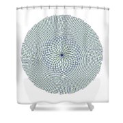 Fibonacci Web Shower Curtain